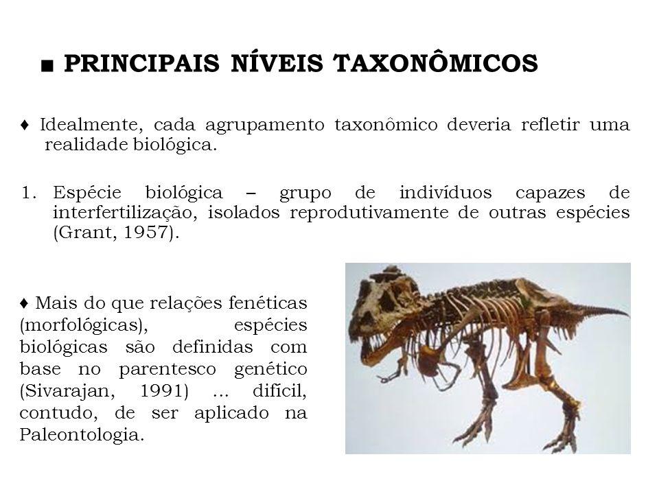■ PRINCIPAIS NÍVEIS TAXONÔMICOS