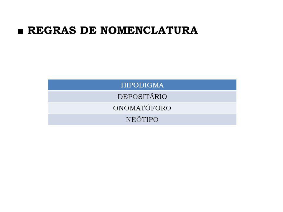■ REGRAS DE NOMENCLATURA