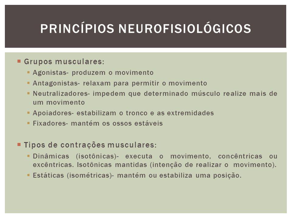 Princípios Neurofisiológicos
