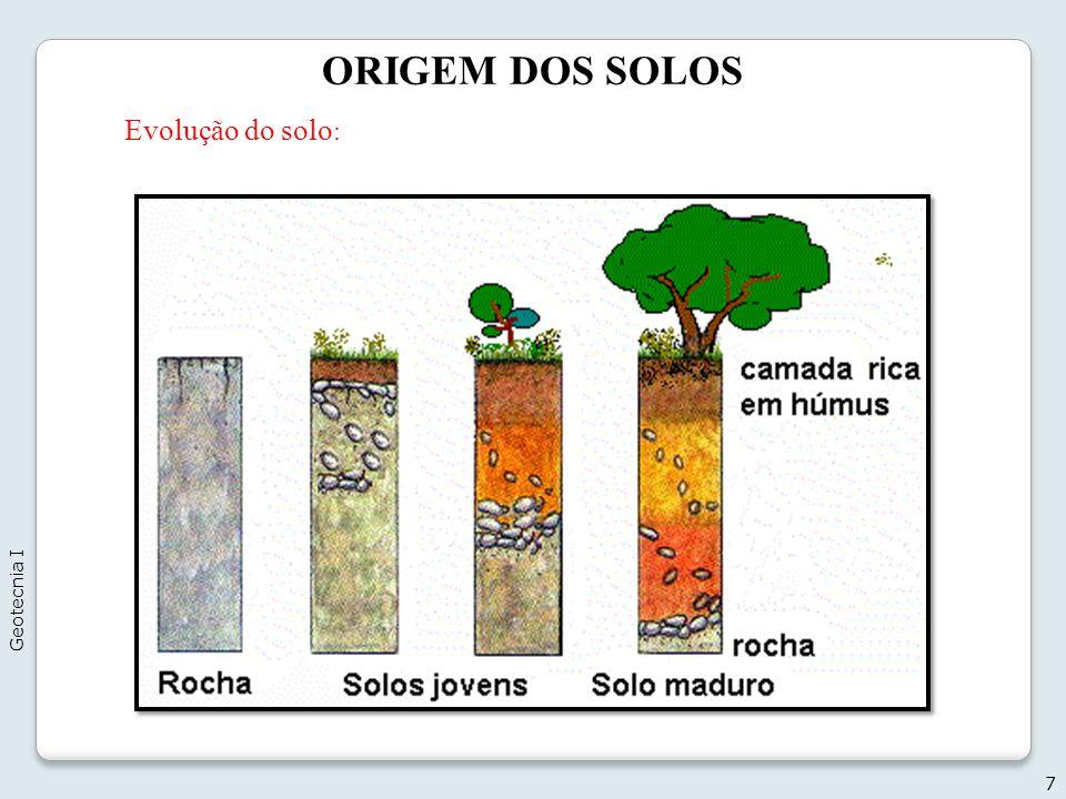 ORIGEM DOS SOLOS Evolução do solo: Geotecnia I