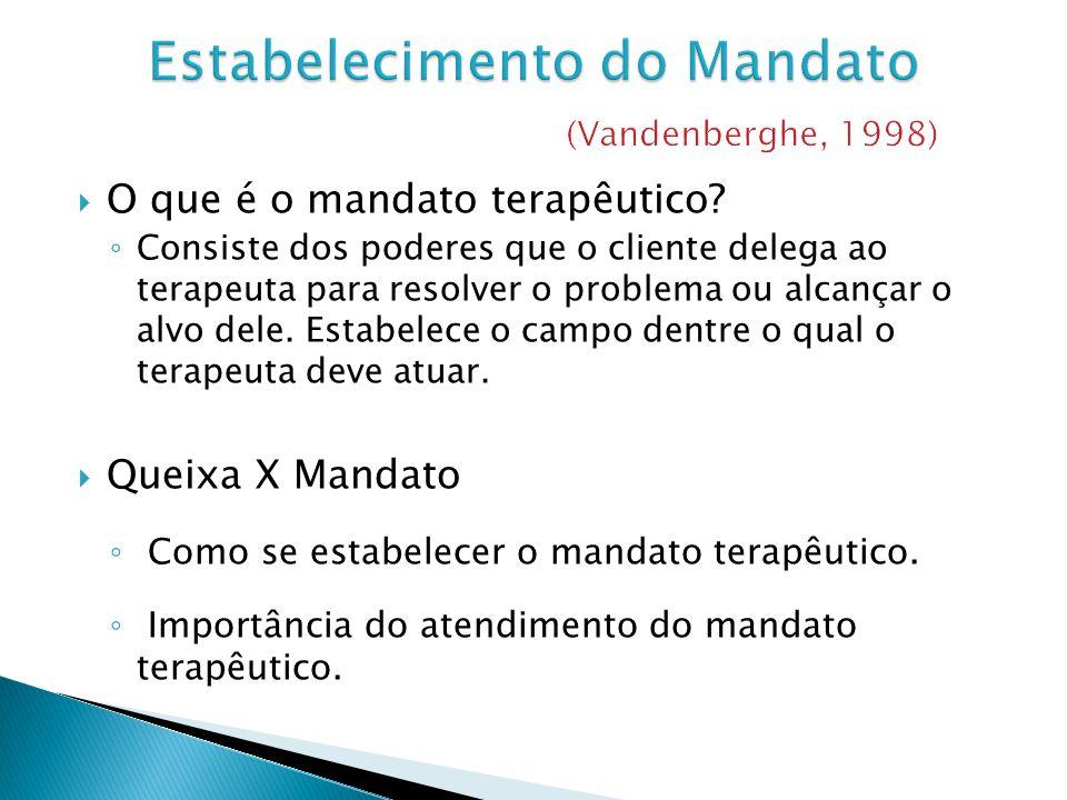 Estabelecimento do Mandato (Vandenberghe, 1998)