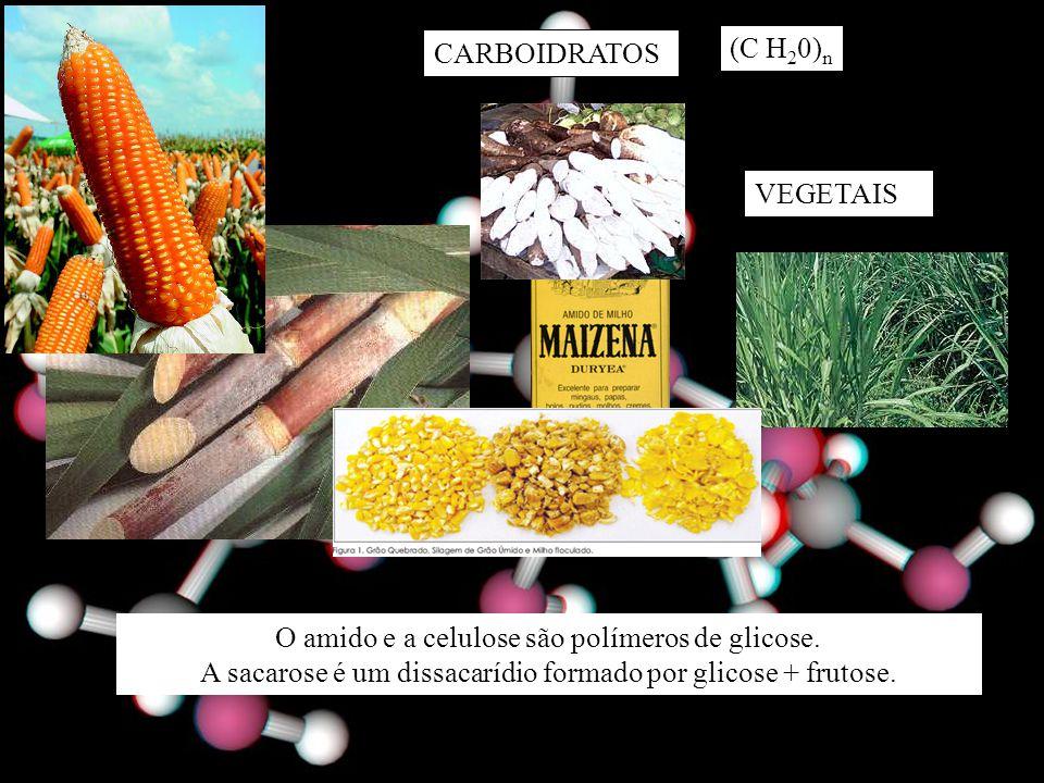 O amido e a celulose são polímeros de glicose.