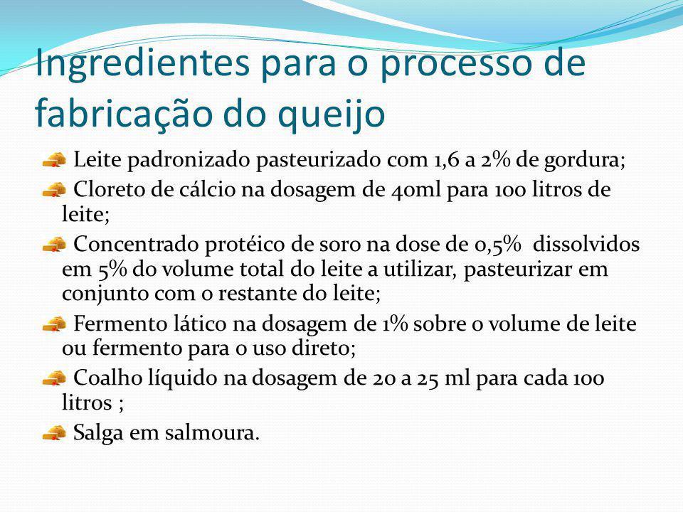 Ingredientes para o processo de fabricação do queijo