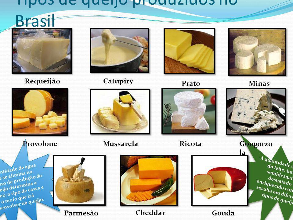 Tipos de queijo produzidos no Brasil