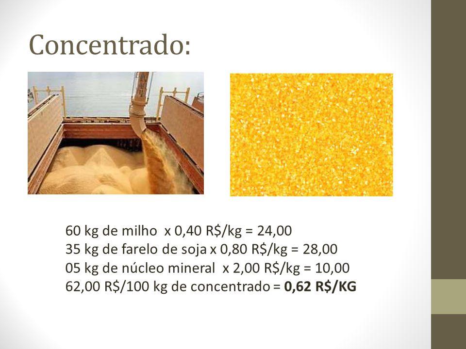 Concentrado: 60 kg de milho x 0,40 R$/kg = 24,00
