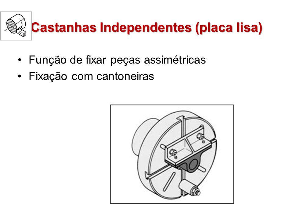 Castanhas Independentes (placa lisa)