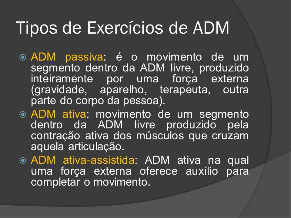 Tipos de Exercícios de ADM