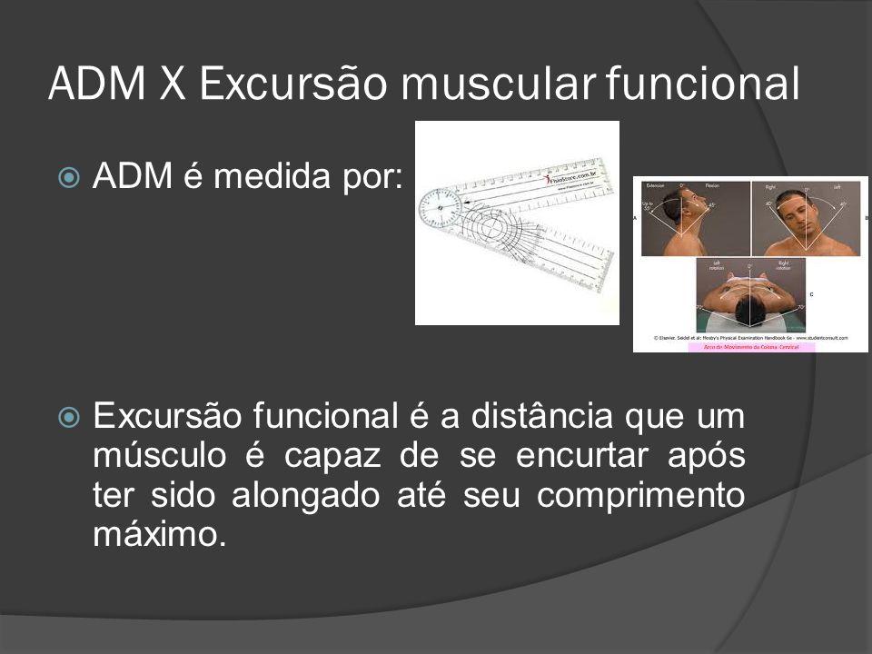 ADM X Excursão muscular funcional