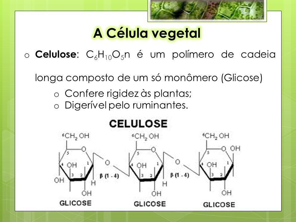 A Célula vegetal Celulose: C6H10O5n é um polímero de cadeia longa composto de um só monômero (Glicose)