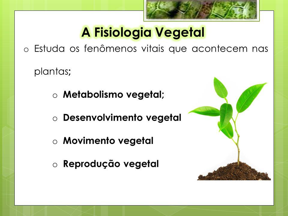 A Fisiologia Vegetal Estuda os fenômenos vitais que acontecem nas plantas; Metabolismo vegetal; Desenvolvimento vegetal.