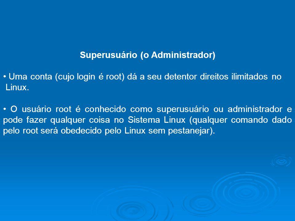 Superusuário (o Administrador)