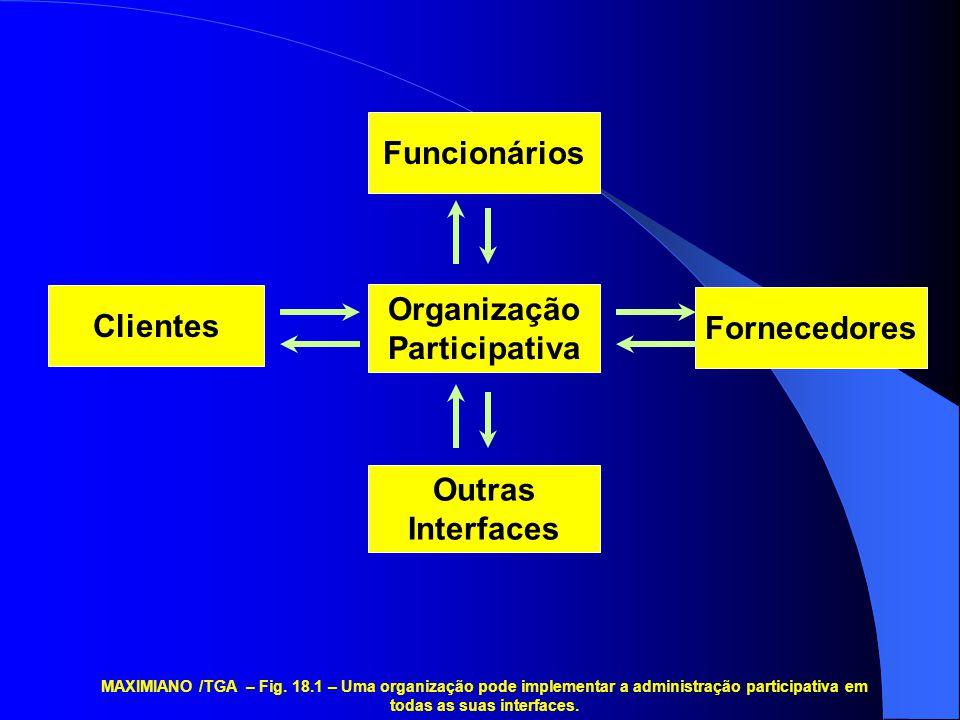 Organização Participativa