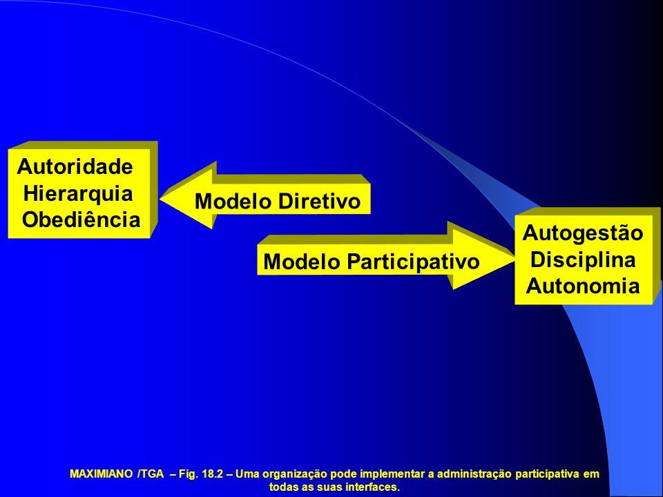Autoridade Hierarquia Obediência Modelo Diretivo Autogestão Disciplina