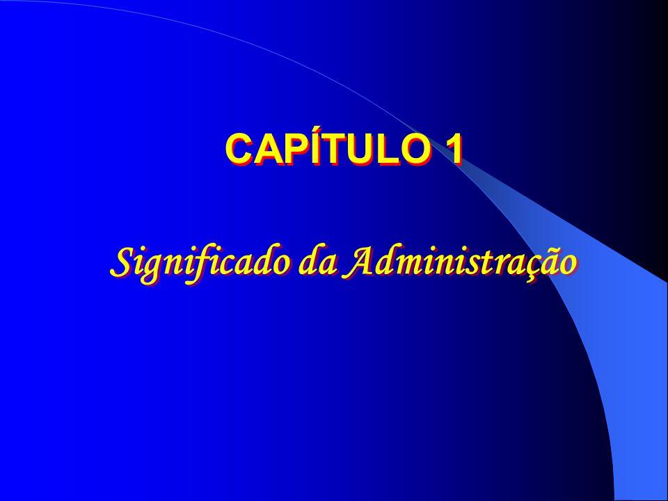 Significado da Administração