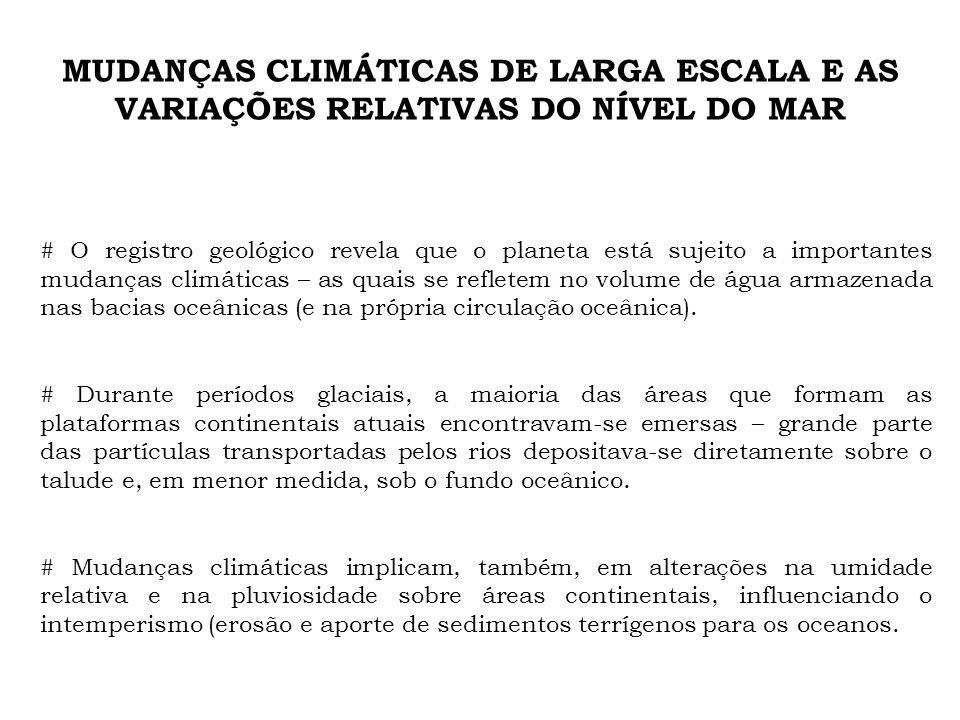 MUDANÇAS CLIMÁTICAS DE LARGA ESCALA E AS VARIAÇÕES RELATIVAS DO NÍVEL DO MAR