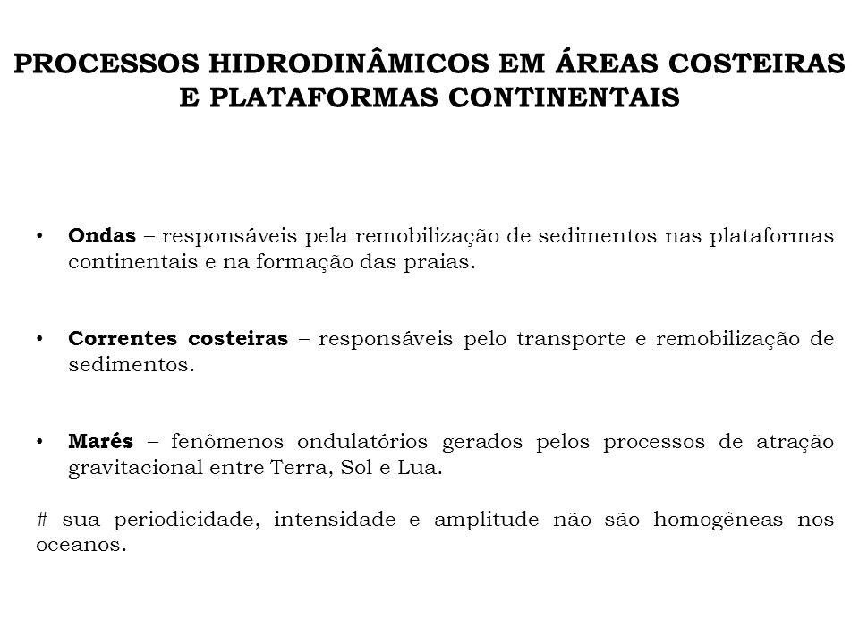 PROCESSOS HIDRODINÂMICOS EM ÁREAS COSTEIRAS E PLATAFORMAS CONTINENTAIS