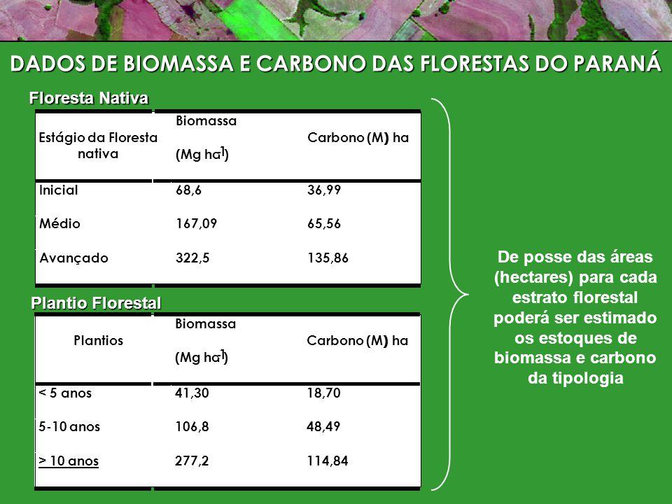 DADOS DE BIOMASSA E CARBONO DAS FLORESTAS DO PARANÁ