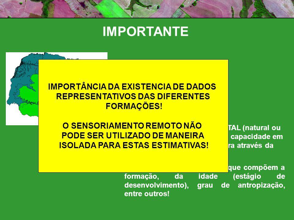 IMPORTANTE IMPORTÂNCIA DA EXISTENCIA DE DADOS