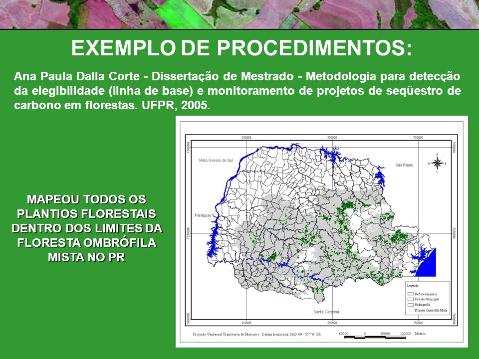 EXEMPLO DE PROCEDIMENTOS: