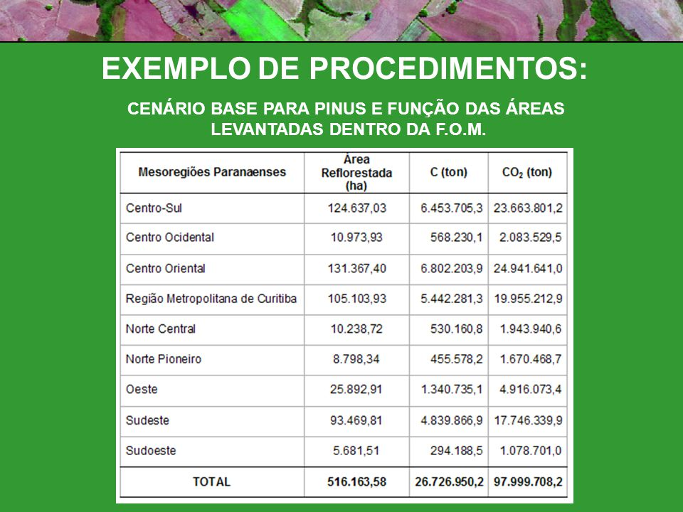 CENÁRIO BASE PARA PINUS E FUNÇÃO DAS ÁREAS LEVANTADAS DENTRO DA F.O.M.