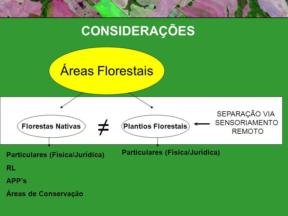 ≠ CONSIDERAÇÕES Áreas Florestais SEPARAÇÃO VIA SENSORIAMENTO REMOTO