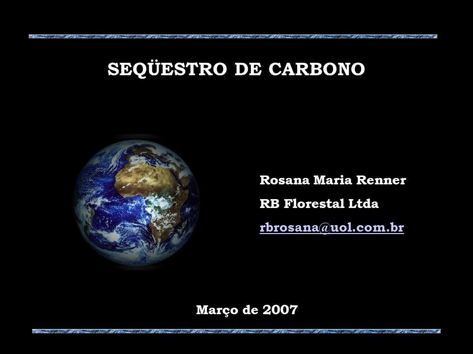 SEQÜESTRO DE CARBONO Rosana Maria Renner RB Florestal Ltda