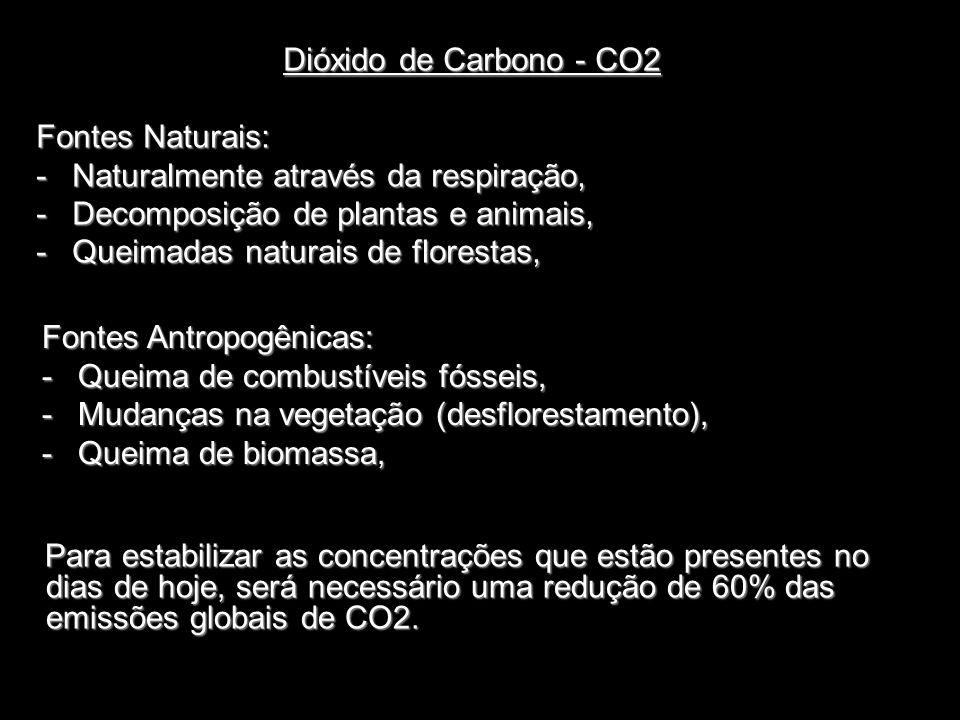 Dióxido de Carbono - CO2 Fontes Naturais: Naturalmente através da respiração, Decomposição de plantas e animais,
