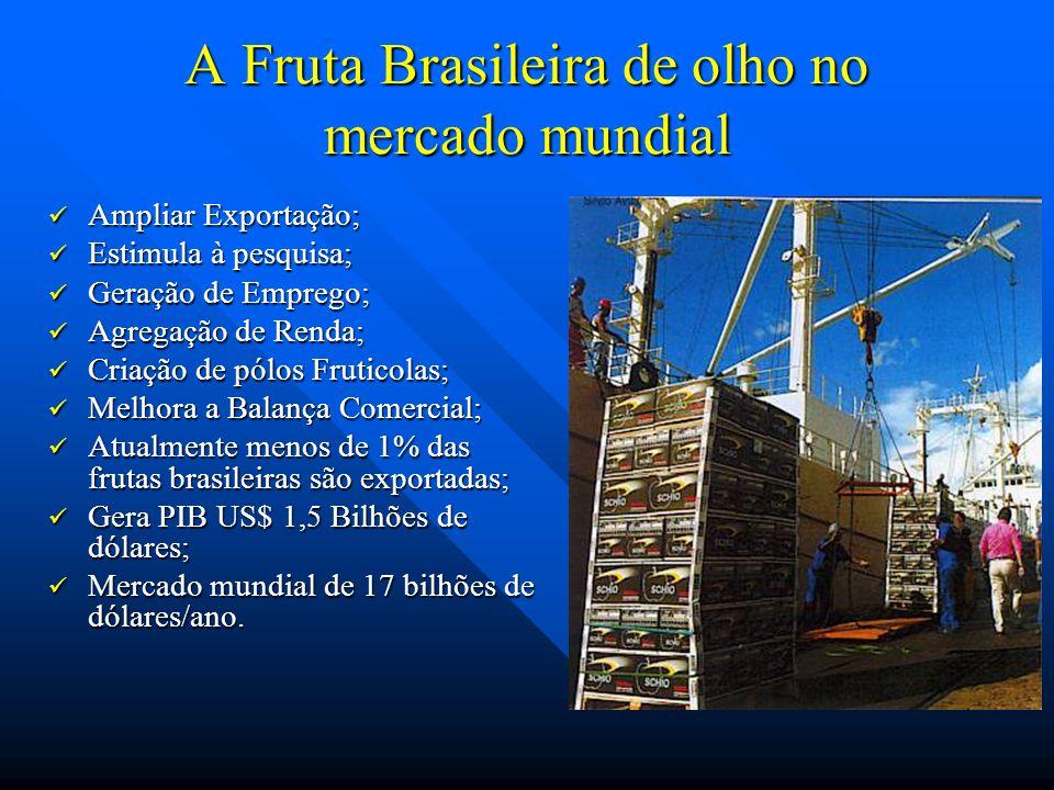 A Fruta Brasileira de olho no mercado mundial