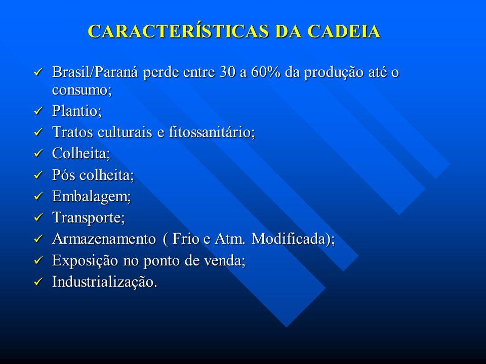 CARACTERÍSTICAS DA CADEIA