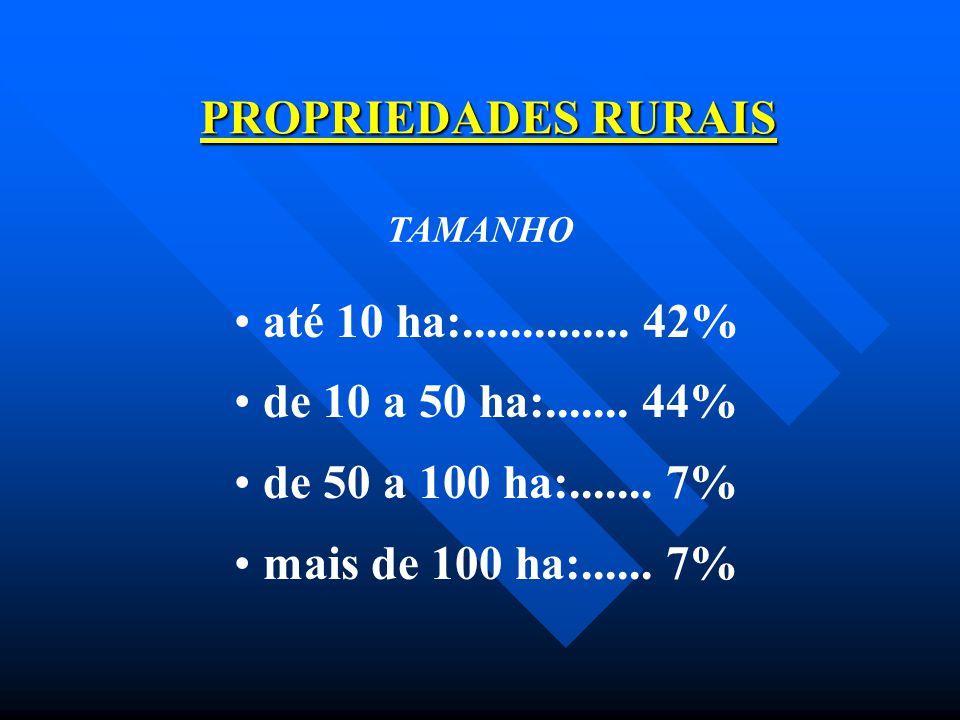 PROPRIEDADES RURAIS até 10 ha:.............. 42%