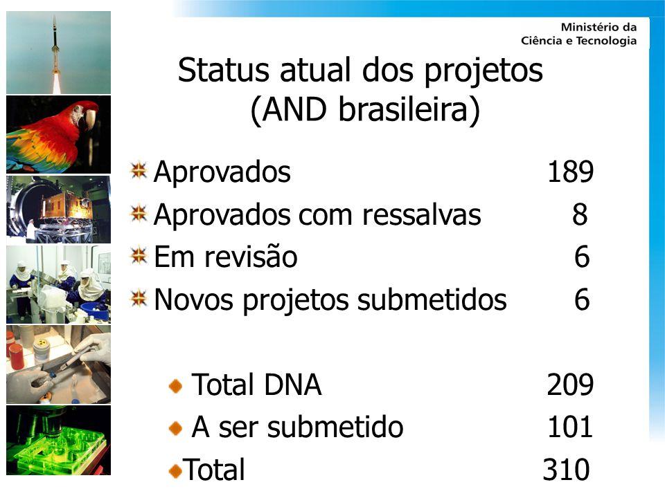 Status atual dos projetos