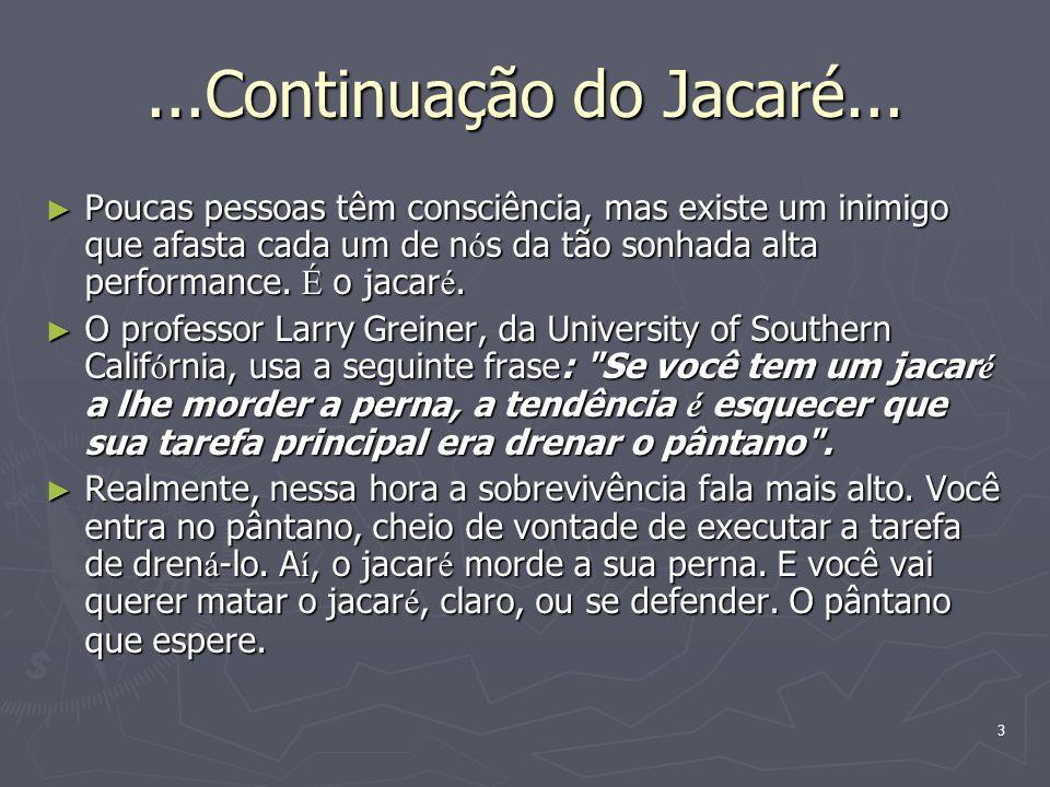 ...Continuação do Jacaré...