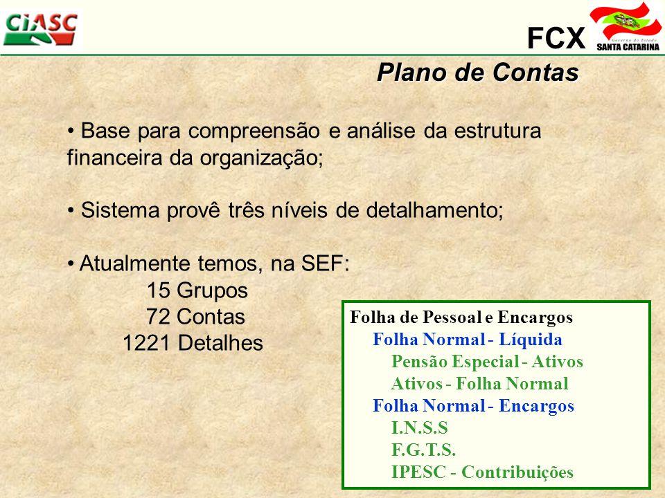 FCX Plano de Contas. Base para compreensão e análise da estrutura financeira da organização; Sistema provê três níveis de detalhamento;