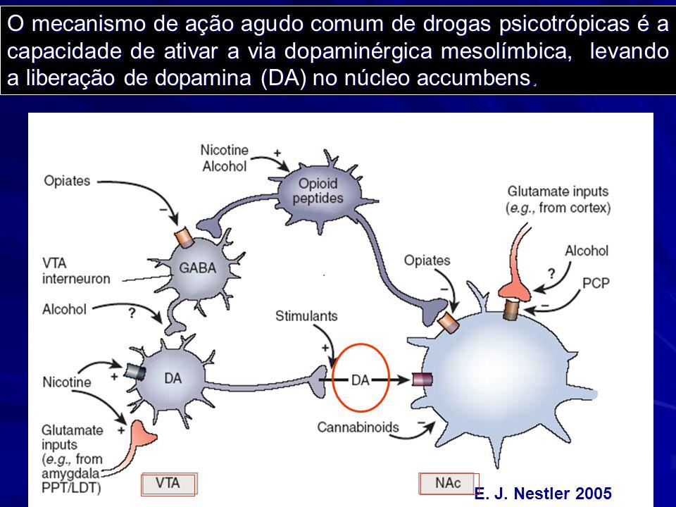 O mecanismo de ação agudo comum de drogas psicotrópicas é a capacidade de ativar a via dopaminérgica mesolímbica, levando a liberação de dopamina (DA) no núcleo accumbens.