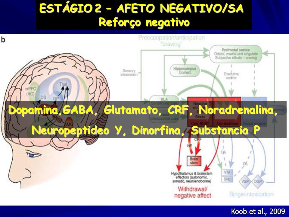 ESTÁGIO 2 – AFETO NEGATIVO/SA Reforço negativo