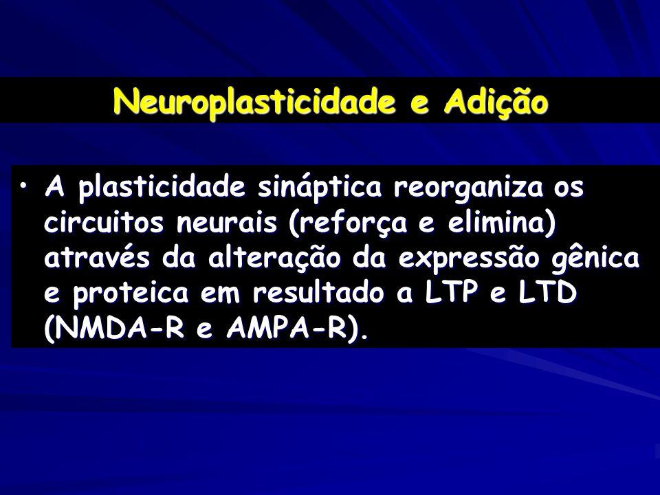 Neuroplasticidade e Adição