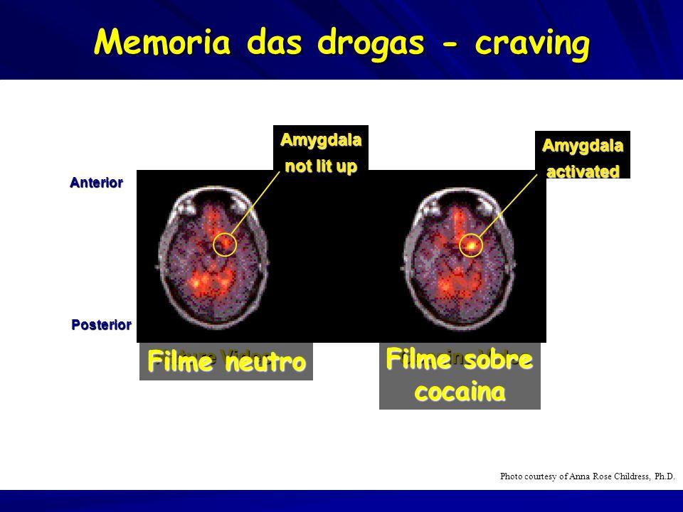 Memoria das drogas - craving