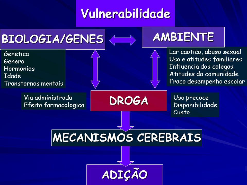 Vulnerabilidade AMBIENTE BIOLOGIA/GENES DROGA MECANISMOS CEREBRAIS