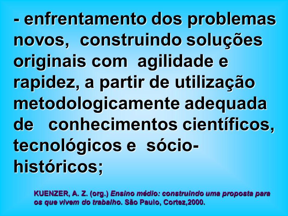 - enfrentamento dos problemas novos, construindo soluções originais com agilidade e rapidez, a partir de utilização metodologicamente adequada de conhecimentos científicos, tecnológicos e sócio-históricos;