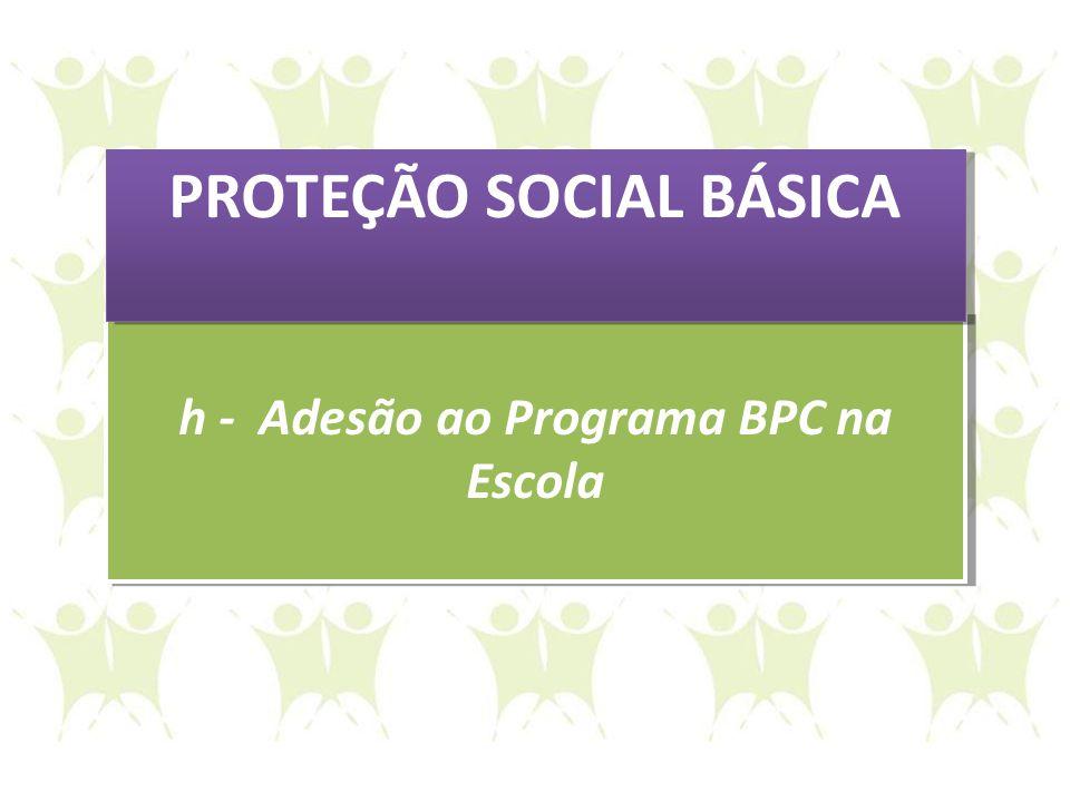 PROTEÇÃO SOCIAL BÁSICA h - Adesão ao Programa BPC na Escola