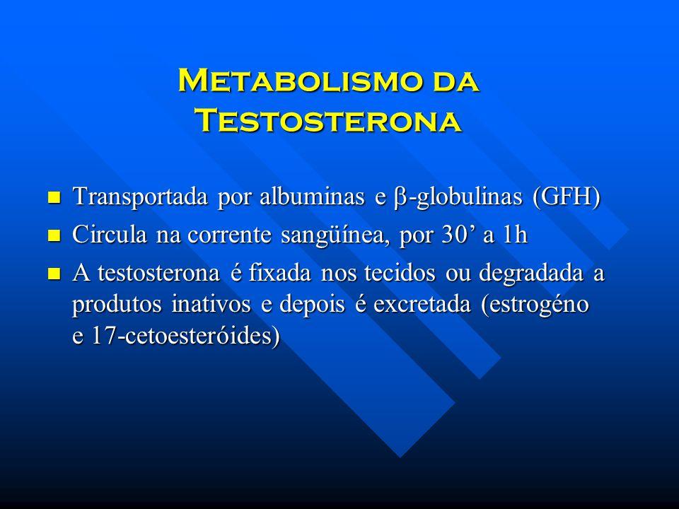 Metabolismo da Testosterona