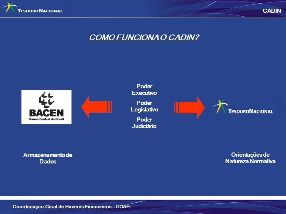 COMO FUNCIONA O CADIN CADIN Poder Executivo Poder Legislativo