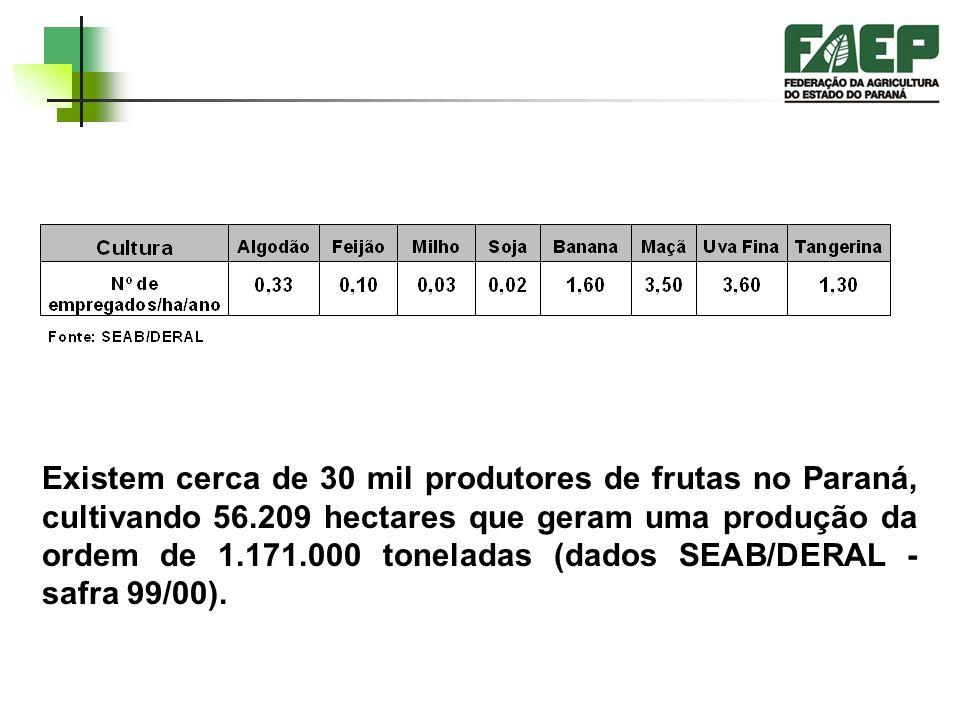 Existem cerca de 30 mil produtores de frutas no Paraná, cultivando 56