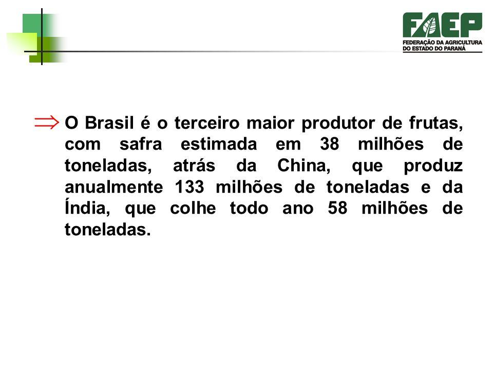 O Brasil é o terceiro maior produtor de frutas, com safra estimada em 38 milhões de toneladas, atrás da China, que produz anualmente 133 milhões de toneladas e da Índia, que colhe todo ano 58 milhões de toneladas.