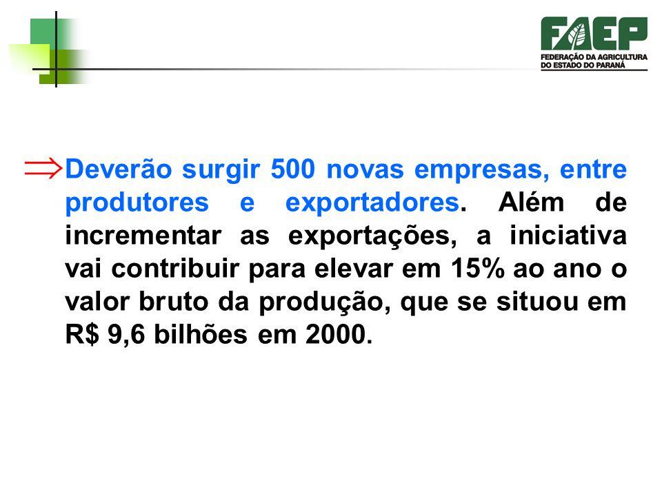 Deverão surgir 500 novas empresas, entre produtores e exportadores