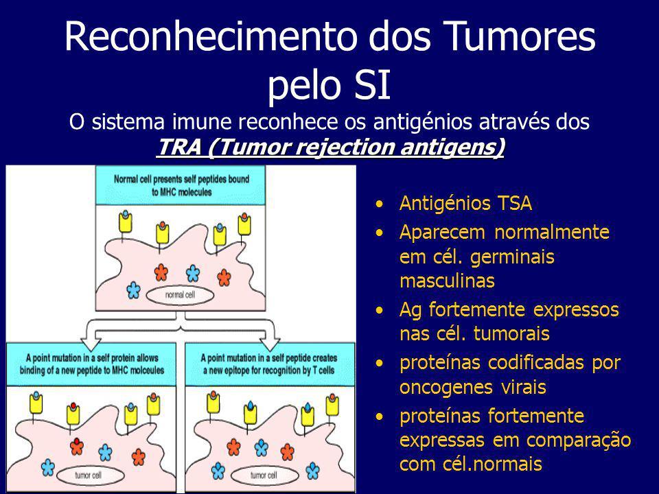 Reconhecimento dos Tumores pelo SI O sistema imune reconhece os antigénios através dos TRA (Tumor rejection antigens)