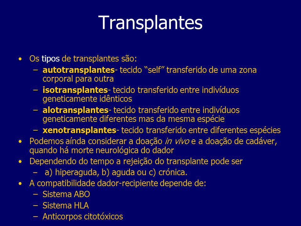 Transplantes Os tipos de transplantes são: