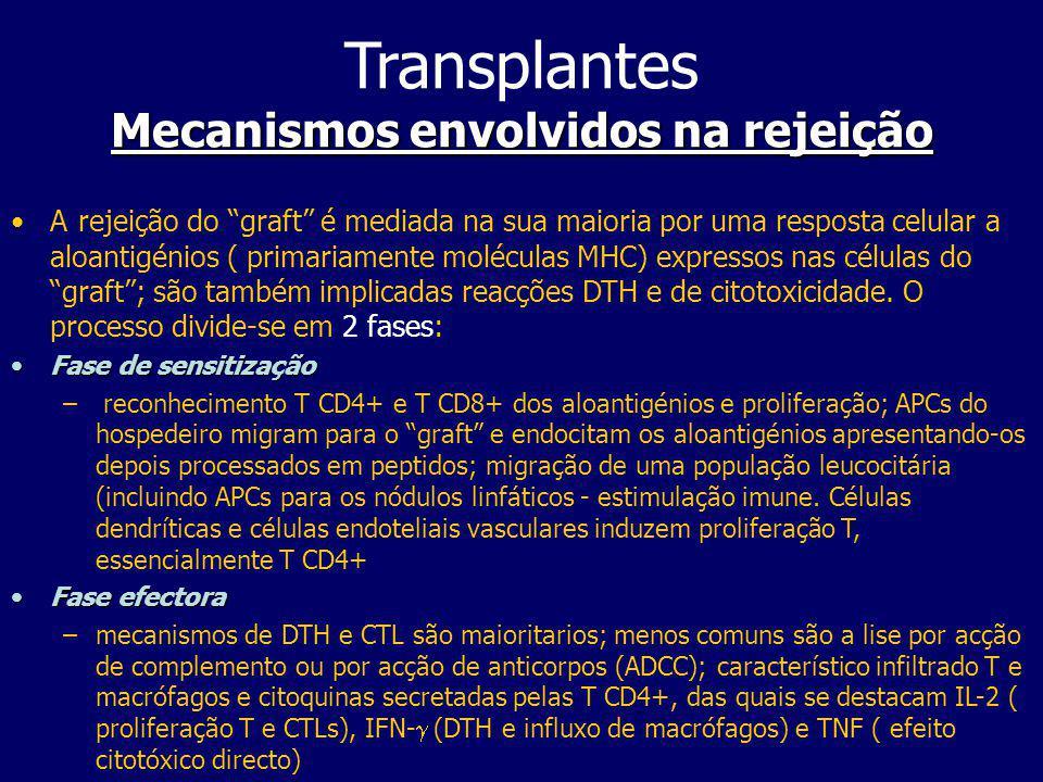 Transplantes Mecanismos envolvidos na rejeição