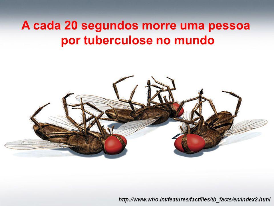 A cada 20 segundos morre uma pessoa por tuberculose no mundo