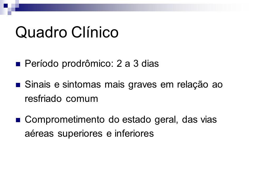 Quadro Clínico Período prodrômico: 2 a 3 dias
